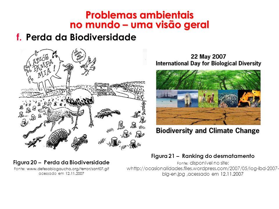 Problemas ambientais no mundo – uma visão geral