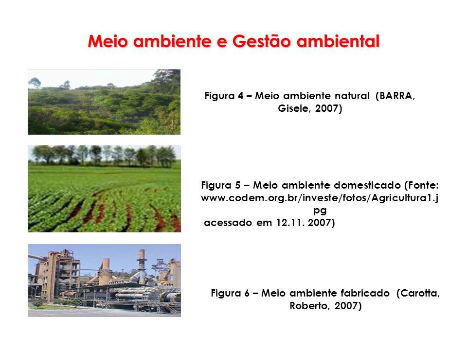Meio ambiente e Gestão ambiental