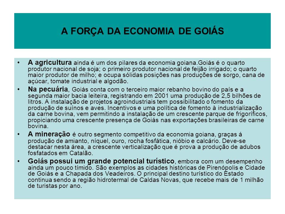 A FORÇA DA ECONOMIA DE GOIÁS