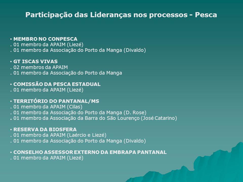 Participação das Lideranças nos processos - Pesca