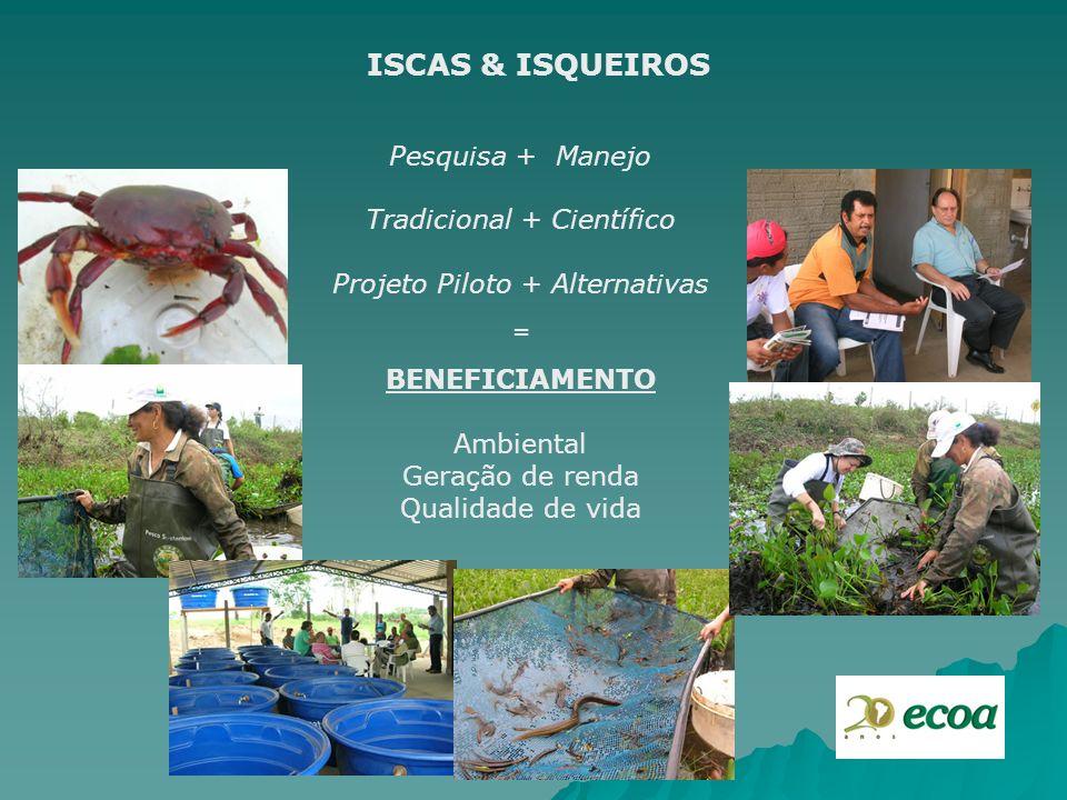 ISCAS & ISQUEIROS Pesquisa + Manejo Tradicional + Científico