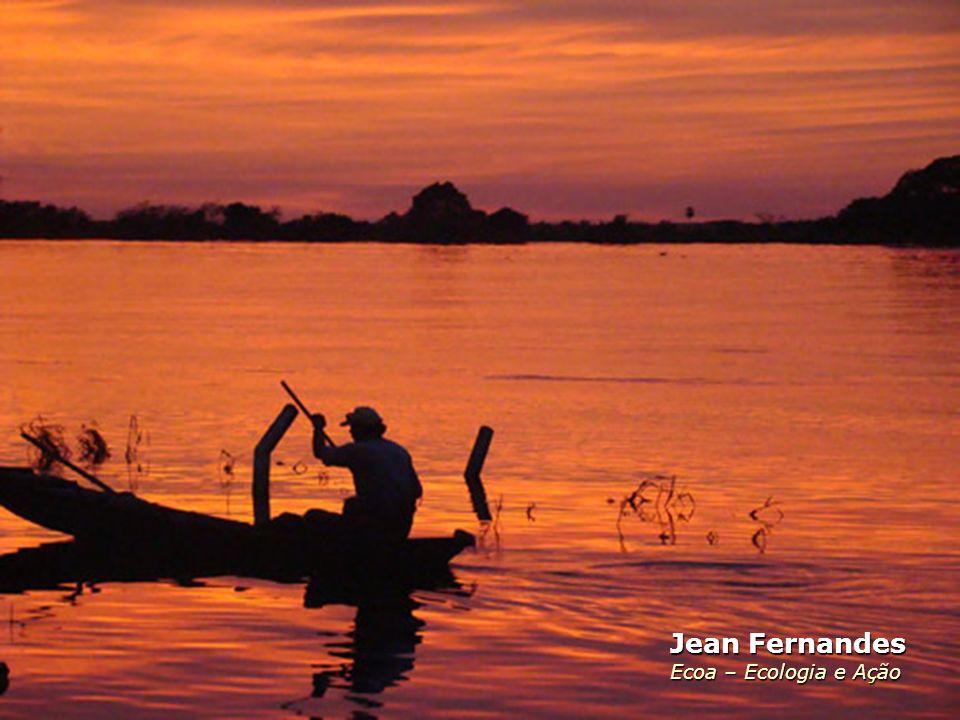 Jean Fernandes Ecoa – Ecologia e Ação