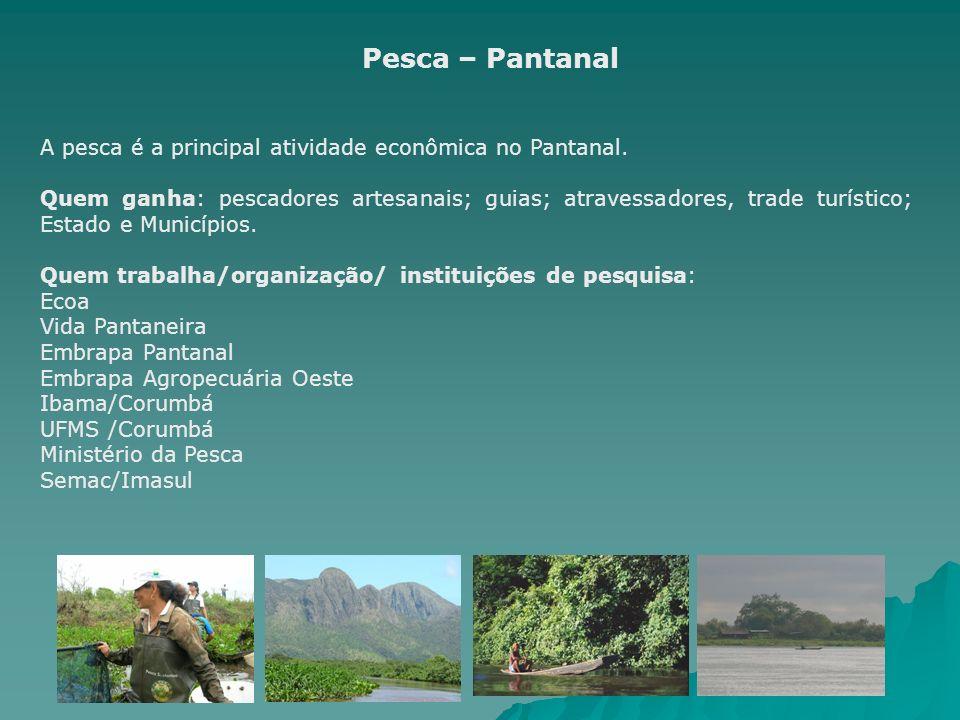 Pesca – Pantanal A pesca é a principal atividade econômica no Pantanal.