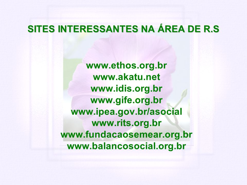 SITES INTERESSANTES NA ÁREA DE R.S