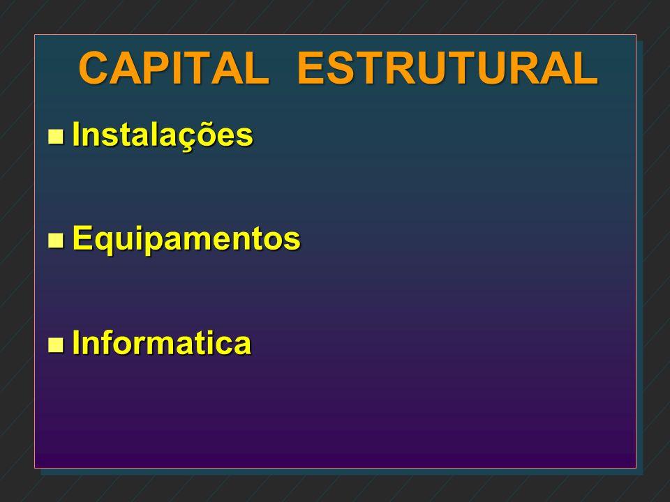CAPITAL ESTRUTURAL Instalações Equipamentos Informatica