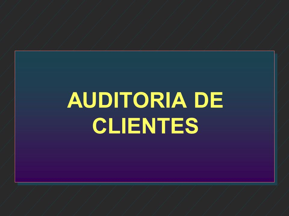 AUDITORIA DE CLIENTES