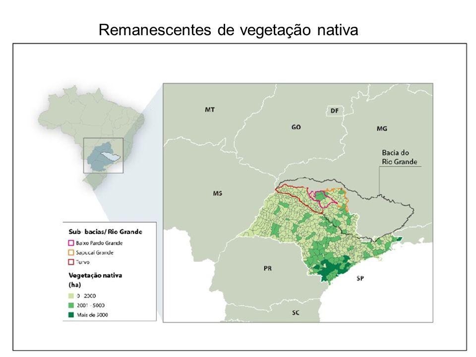 Remanescentes de vegetação nativa