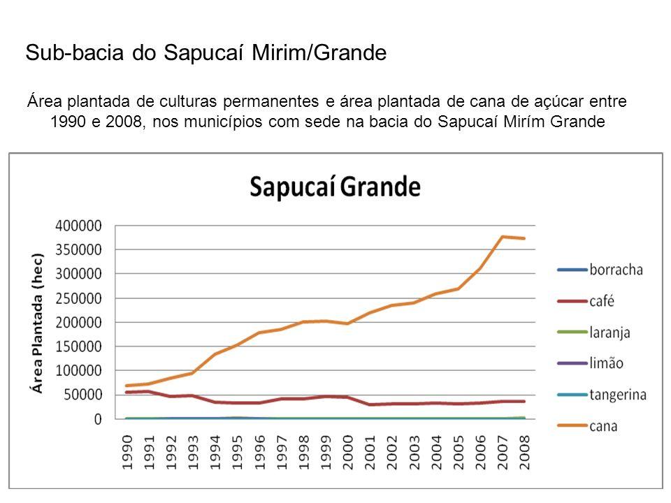 Sub-bacia do Sapucaí Mirim/Grande