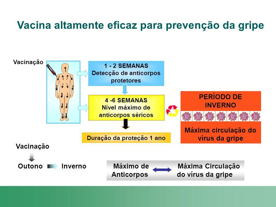 Vacina altamente eficaz para prevenção da gripe