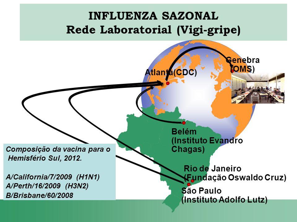 INFLUENZA SAZONAL Rede Laboratorial (Vigi-gripe)