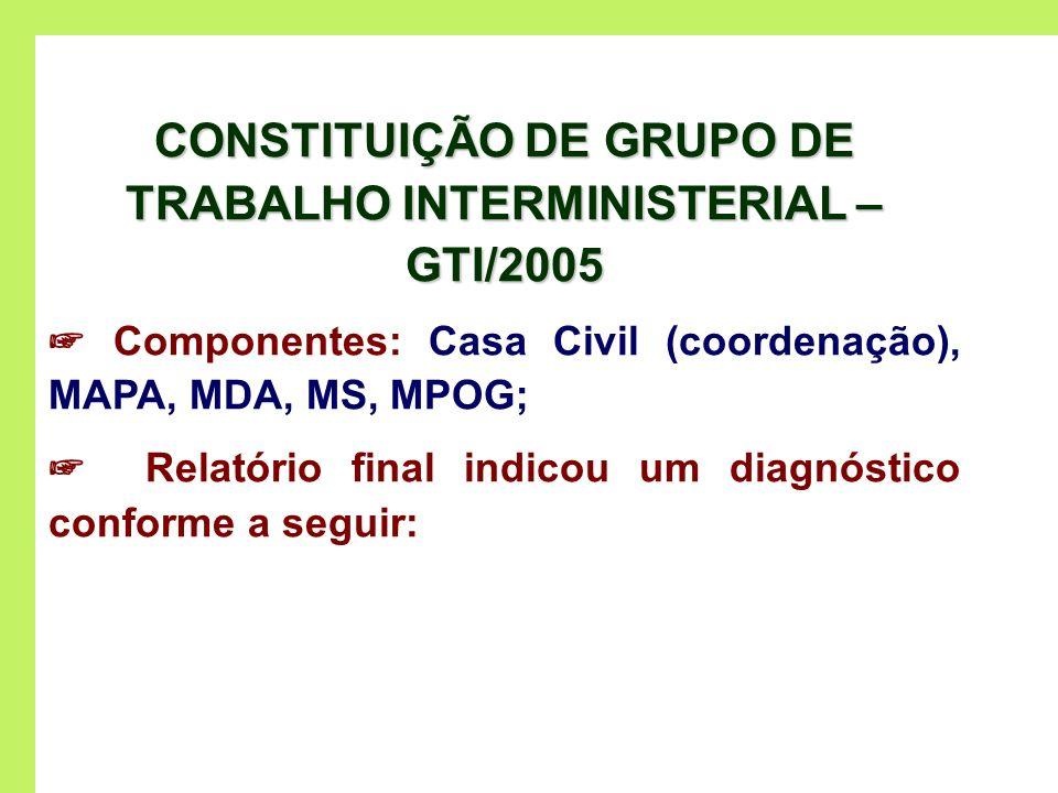 CONSTITUIÇÃO DE GRUPO DE TRABALHO INTERMINISTERIAL – GTI/2005