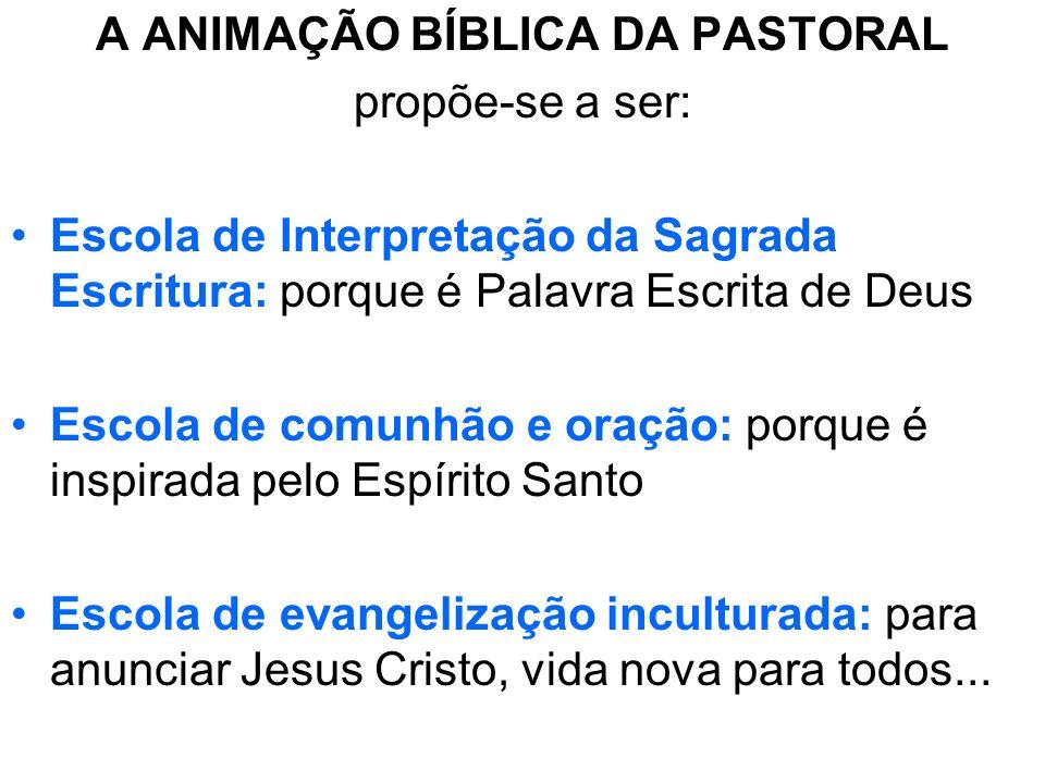 A ANIMAÇÃO BÍBLICA DA PASTORAL