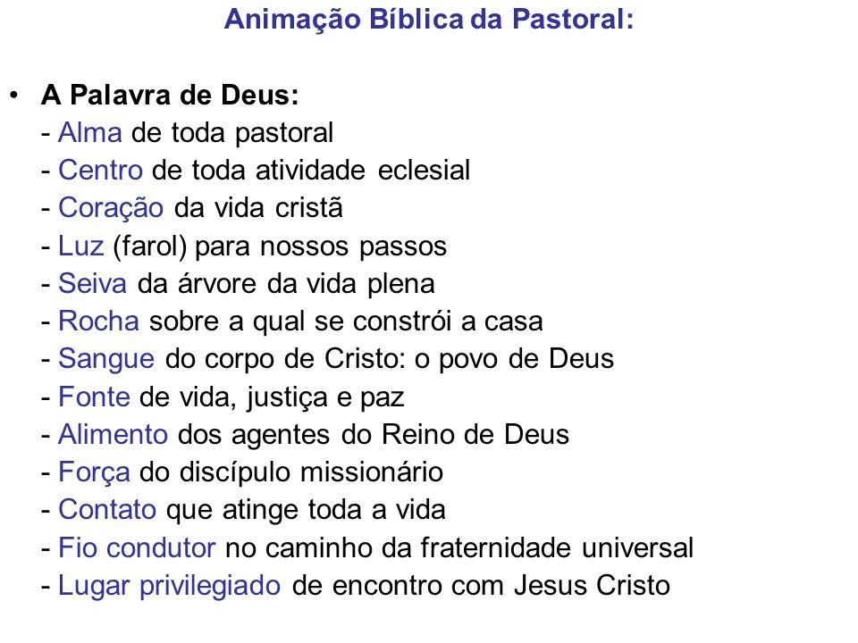 Animação Bíblica da Pastoral: