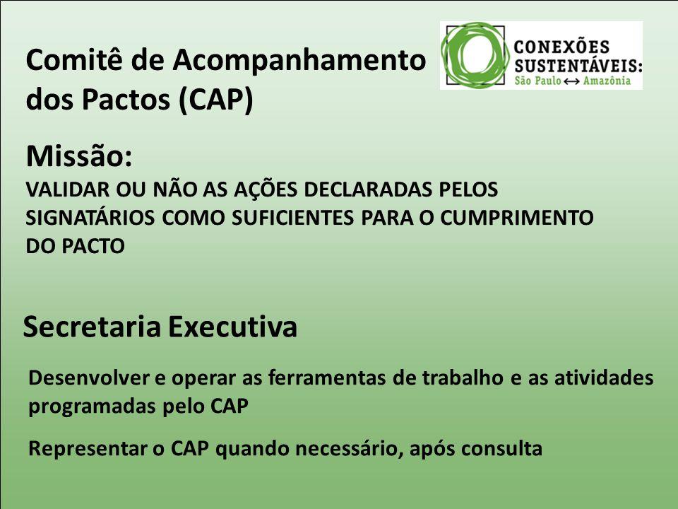 Comitê de Acompanhamento dos Pactos (CAP)