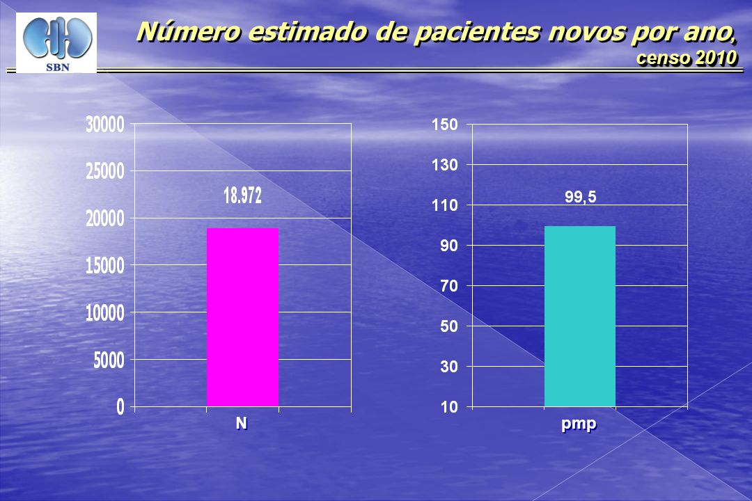 Número estimado de pacientes novos por ano, censo 2010