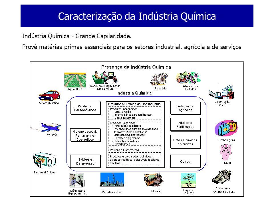 Caracterização da Indústria Química