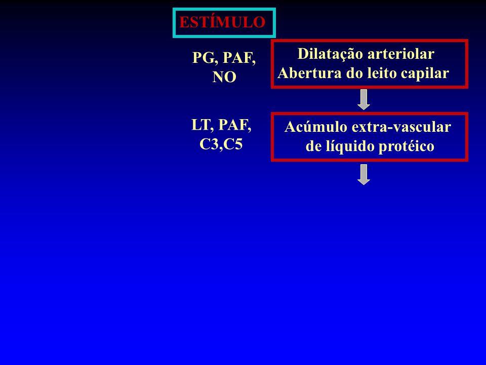 ESTÍMULO Dilatação arteriolar. Abertura do leito capilar. PG, PAF, NO. LT, PAF, C3,C5. Acúmulo extra-vascular.