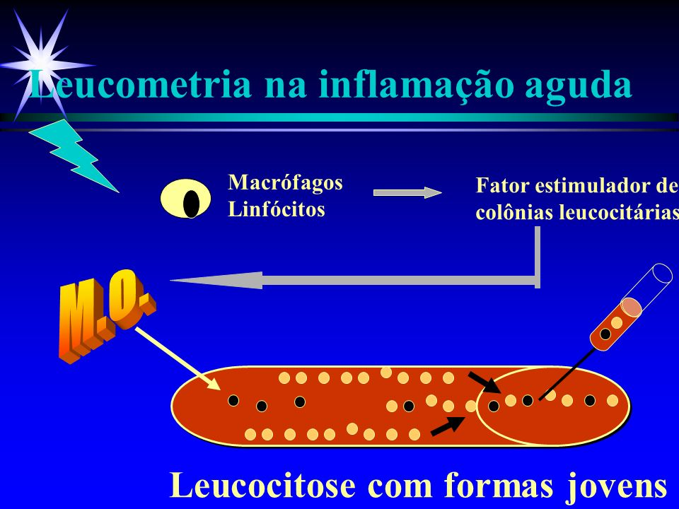 Leucometria na inflamação aguda