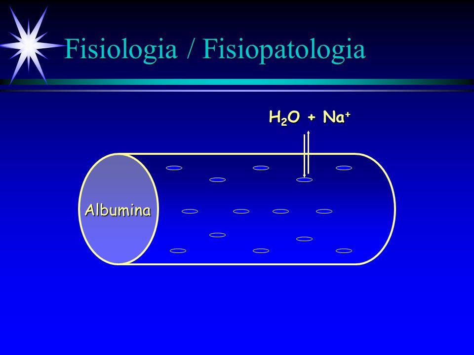 Fisiologia / Fisiopatologia