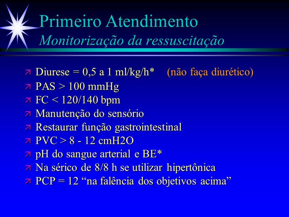 Primeiro Atendimento Monitorização da ressuscitação