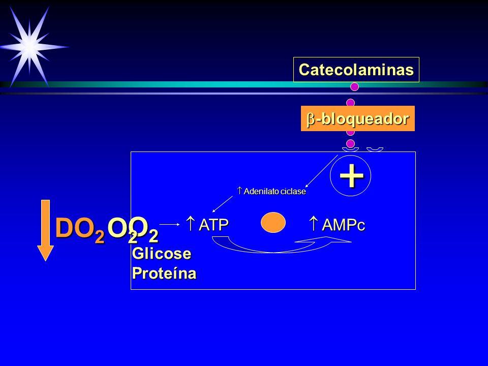 + DO2 O2 O2 Catecolaminas -bloqueador  ATP  AMPc Glicose Proteína