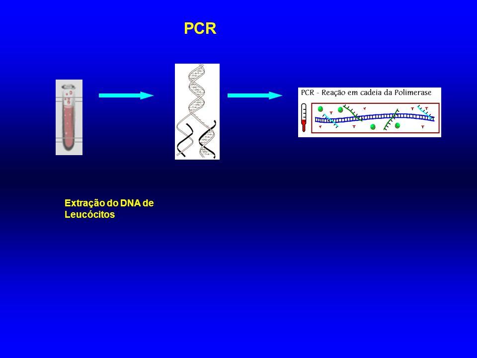 PCR Extração do DNA de Leucócitos
