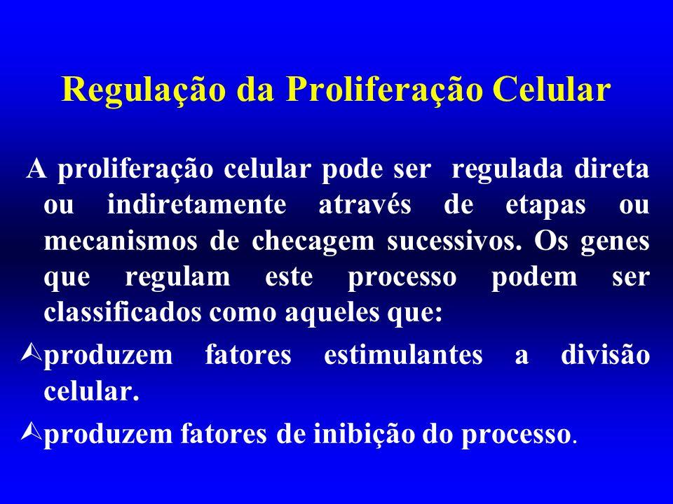 Regulação da Proliferação Celular