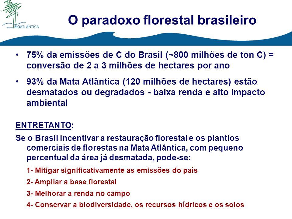 O paradoxo florestal brasileiro