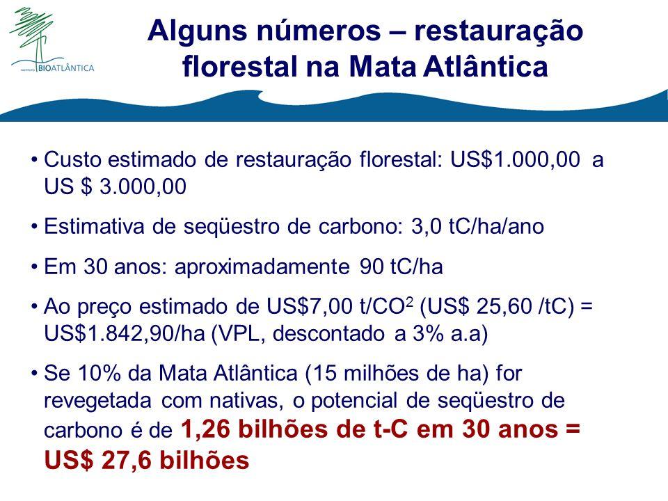 Alguns números – restauração florestal na Mata Atlântica