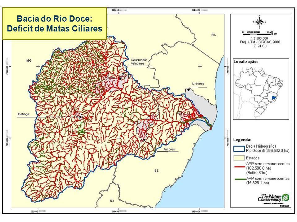Bacia do Rio Doce: Deficit de Matas Ciliares