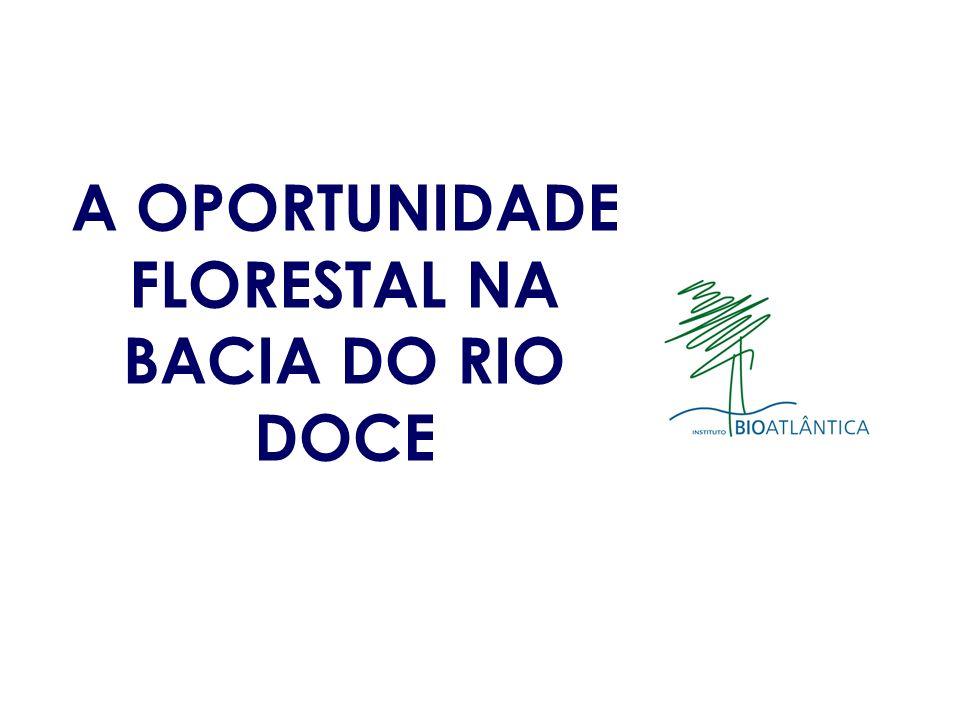 A OPORTUNIDADE FLORESTAL NA BACIA DO RIO DOCE
