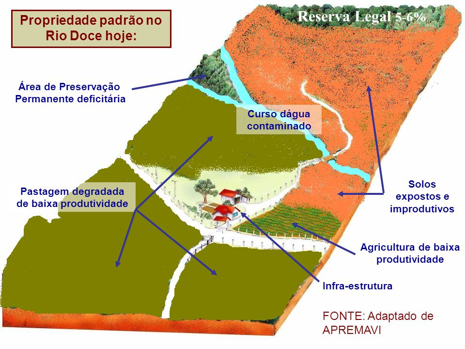 Reserva Legal 5-6% Propriedade padrão no Rio Doce hoje: