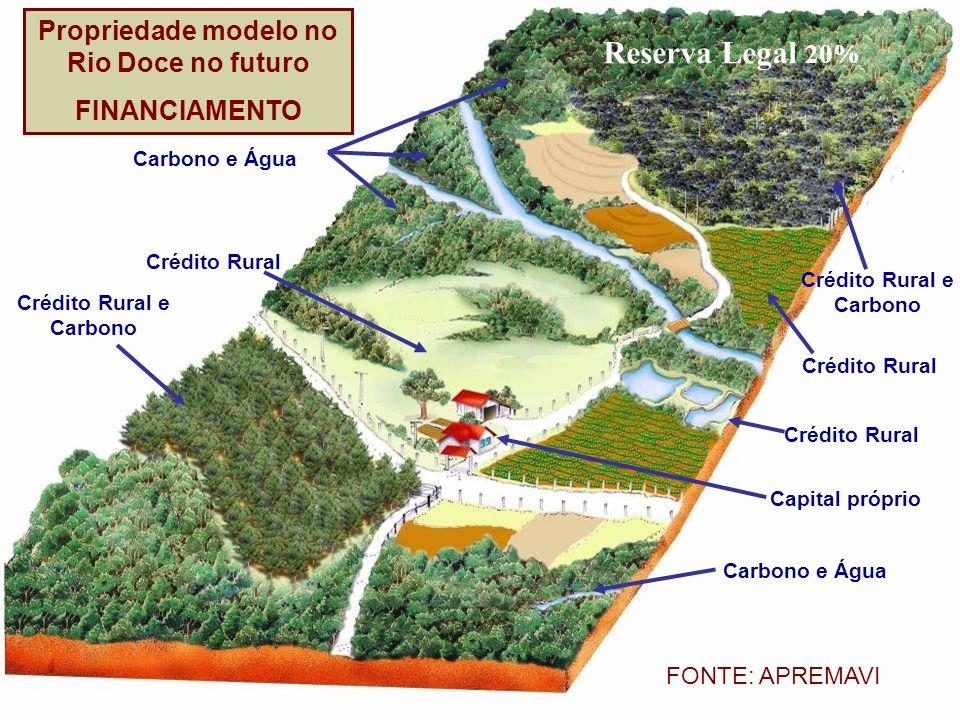 Reserva Legal 20% Propriedade modelo no Rio Doce no futuro