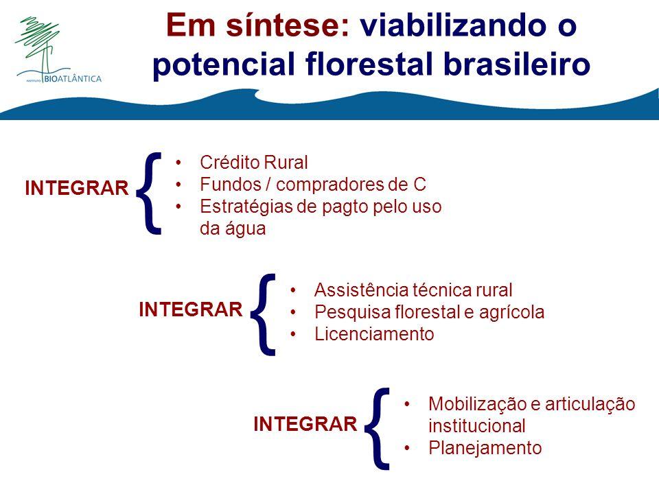 Em síntese: viabilizando o potencial florestal brasileiro