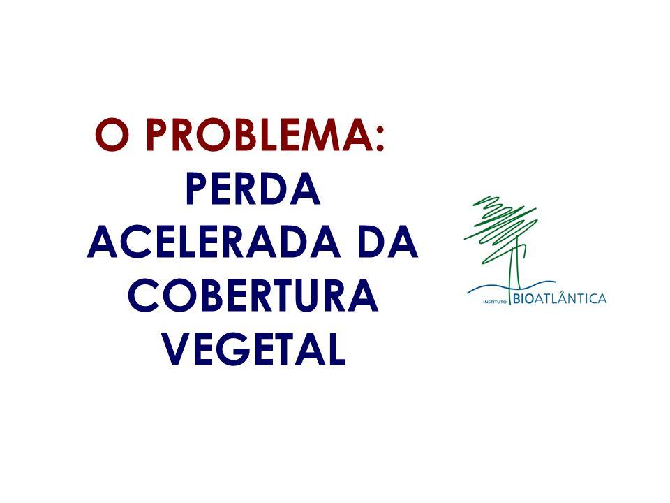 O PROBLEMA: PERDA ACELERADA DA COBERTURA VEGETAL