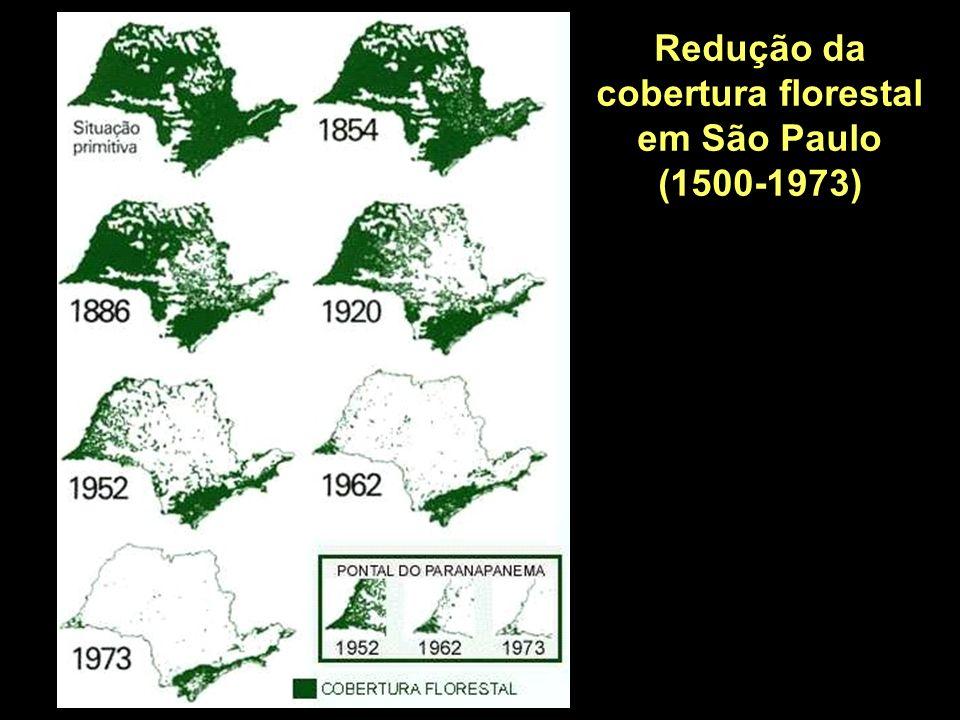Redução da cobertura florestal em São Paulo (1500-1973)