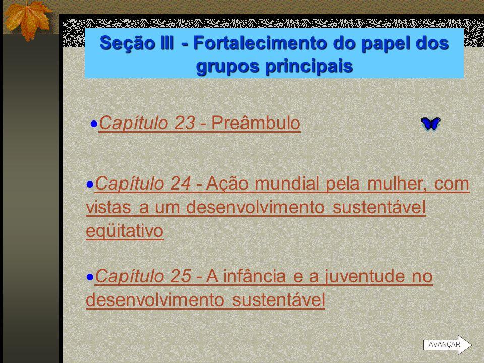 Seção III - Fortalecimento do papel dos grupos principais