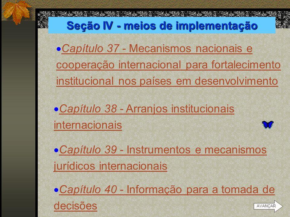 Seção IV - meios de implementação
