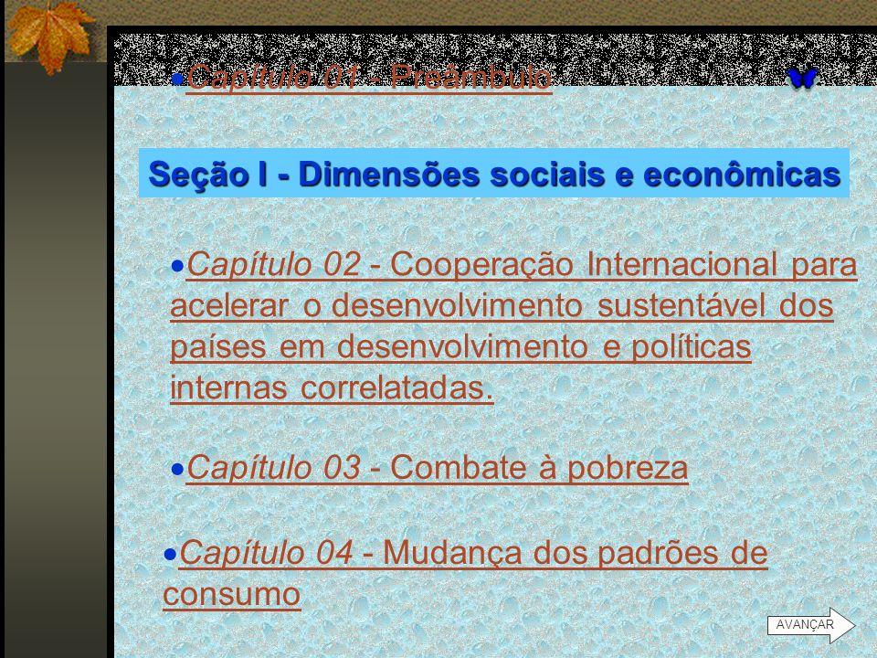 Seção I - Dimensões sociais e econômicas
