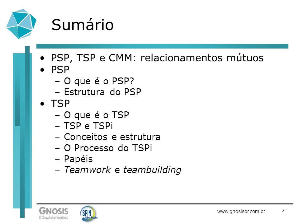Sumário PSP, TSP e CMM: relacionamentos mútuos PSP TSP O que é o PSP