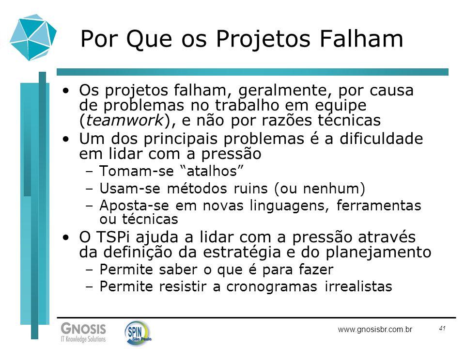 Por Que os Projetos Falham
