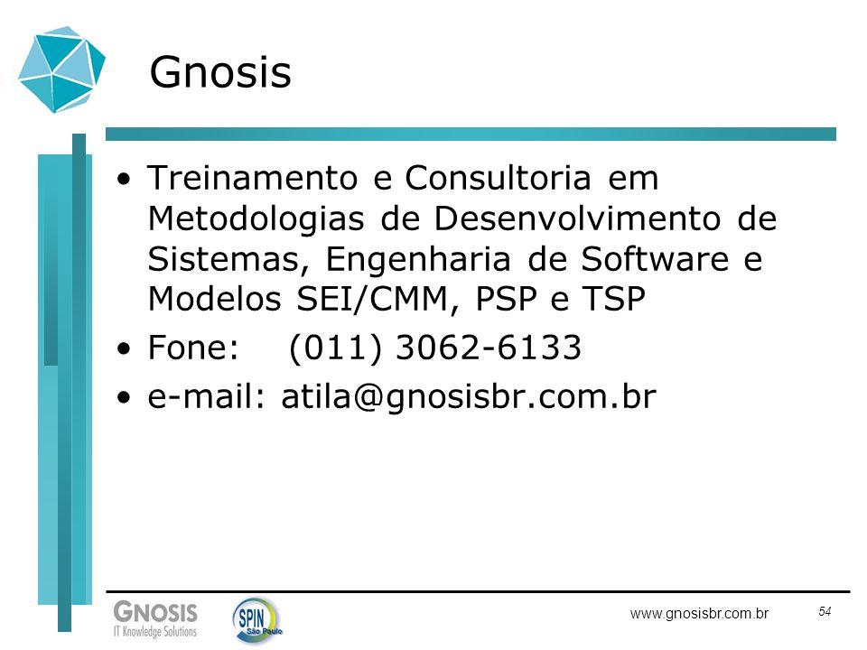 Gnosis Treinamento e Consultoria em Metodologias de Desenvolvimento de Sistemas, Engenharia de Software e Modelos SEI/CMM, PSP e TSP.