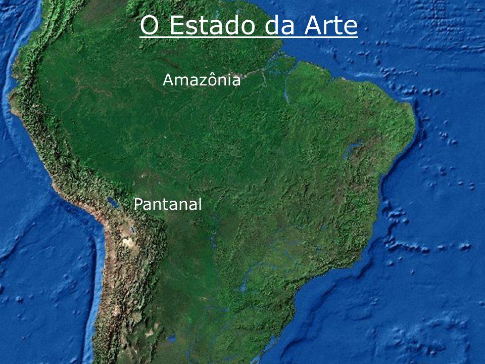 O Estado da Arte Amazônia Pantanal www.riosvivos.org.br
