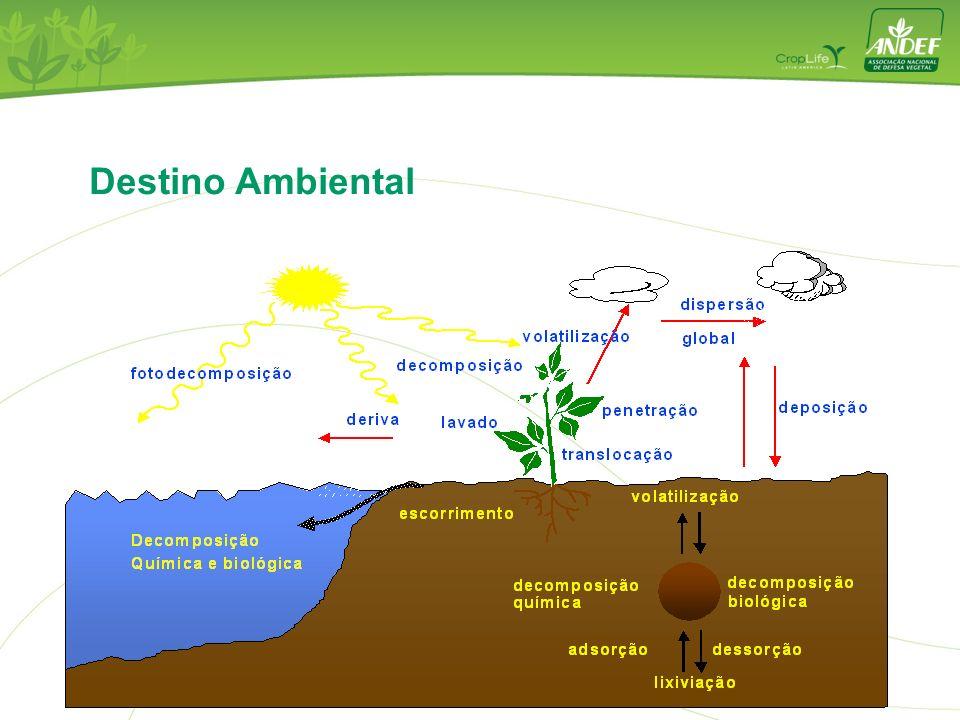 Destino Ambiental 12