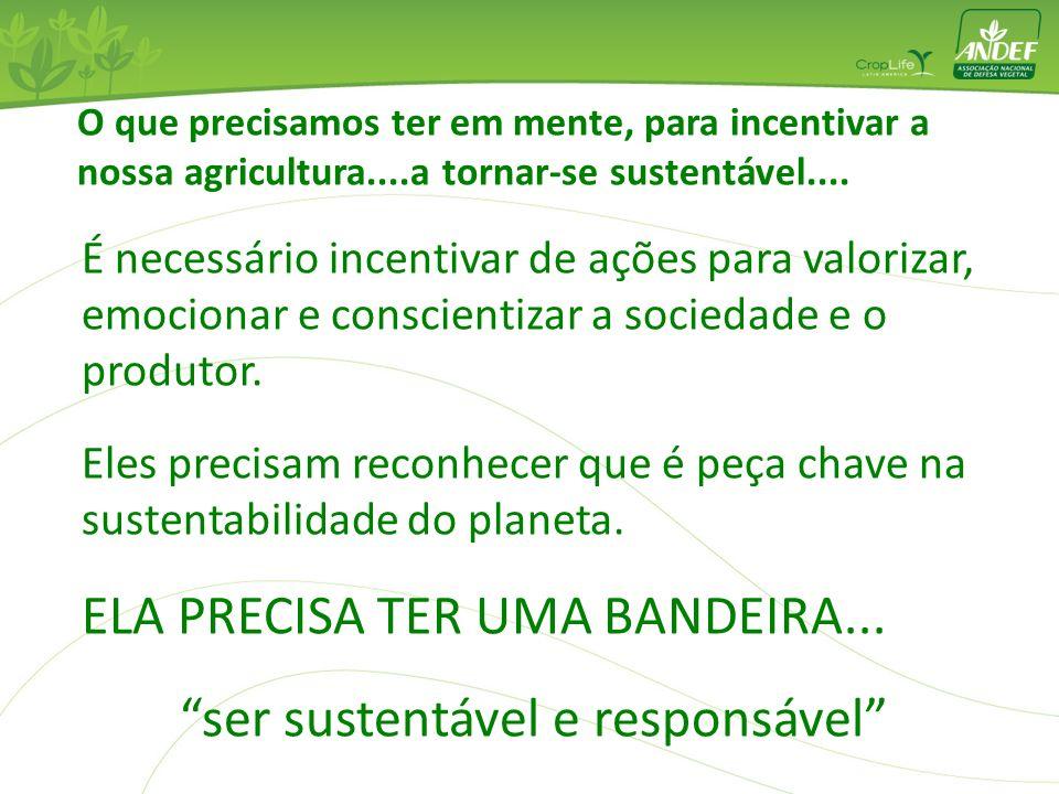 ser sustentável e responsável