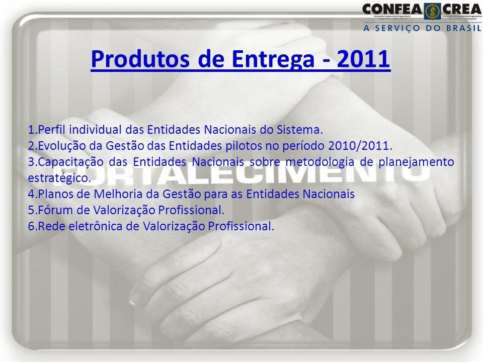 Produtos de Entrega - 2011 Perfil individual das Entidades Nacionais do Sistema. Evolução da Gestão das Entidades pilotos no período 2010/2011.