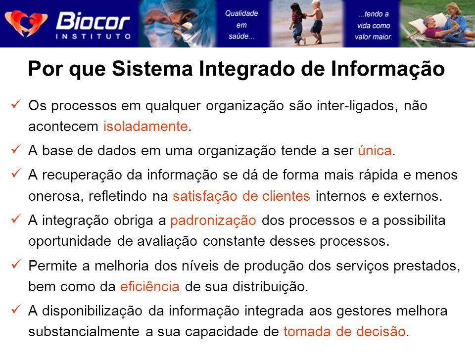 Por que Sistema Integrado de Informação
