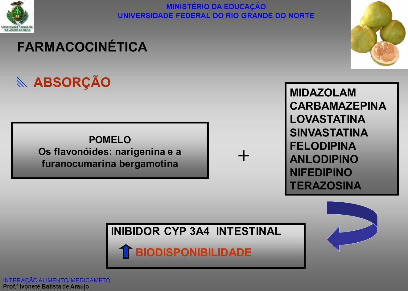Os flavonóides: narigenina e a furanocumarina bergamotina