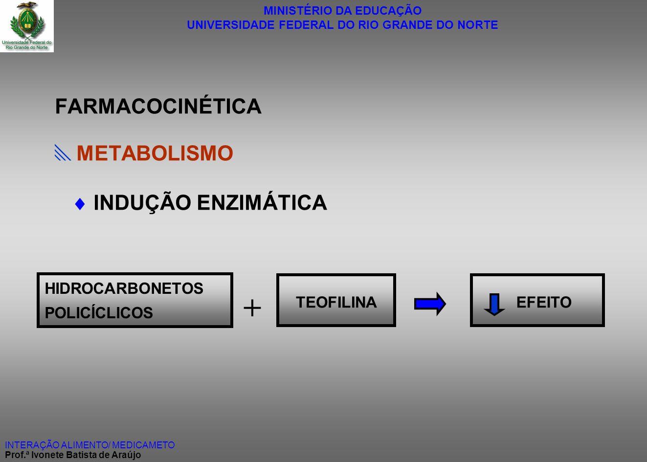 + FARMACOCINÉTICA METABOLISMO  INDUÇÃO ENZIMÁTICA HIDROCARBONETOS