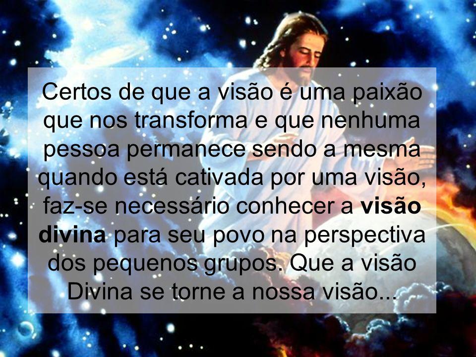 Certos de que a visão é uma paixão que nos transforma e que nenhuma pessoa permanece sendo a mesma quando está cativada por uma visão, faz-se necessário conhecer a visão divina para seu povo na perspectiva dos pequenos grupos.